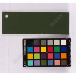 Karton Passe-Partout Moorman ciemna jesienna zieleń M2460