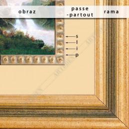 Slip ramiarski złoty PLA14B/ORO - montaż